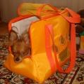 Летняя сумка переноска