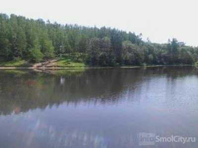 Разрешат ли купаться в Реадовке