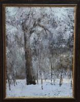 Александр Долосов. Дерево в инее